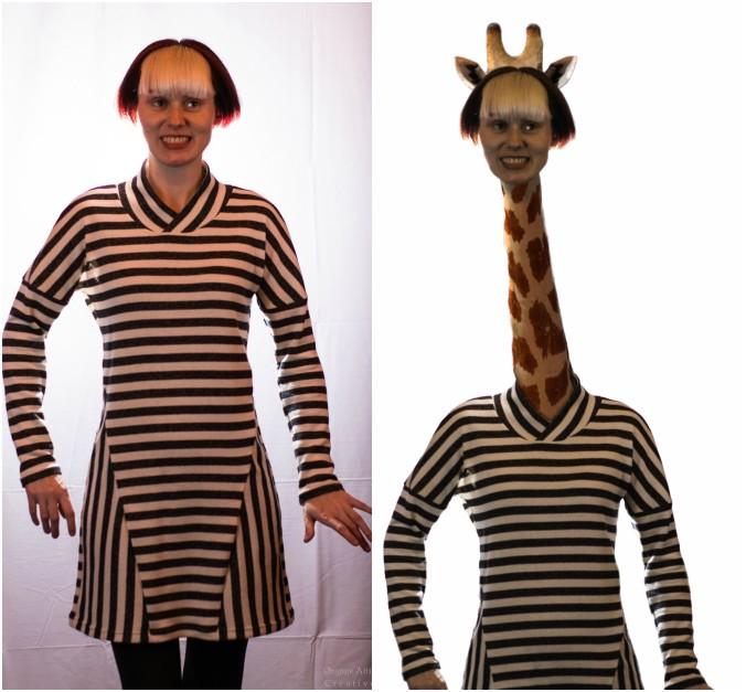 Giraffe Goals