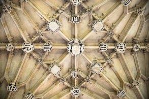Epic ceiling